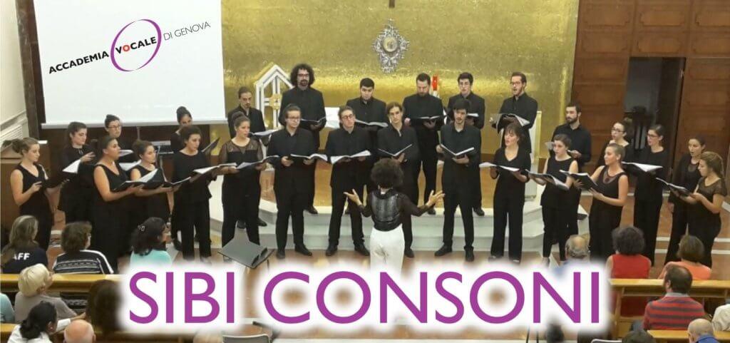 sibi-consoni1